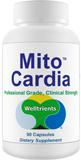Mito Cardio CVS